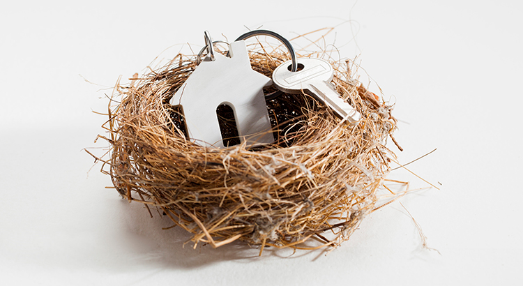 nest with a house key ring and a key